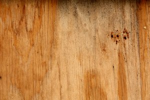 Woodgrain texture: A weathered woodgrain texture