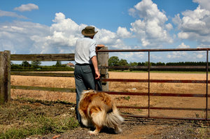 Farmer and dog