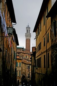 Siena: a different view of Siena's landscape