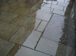 Wet Pavement 1