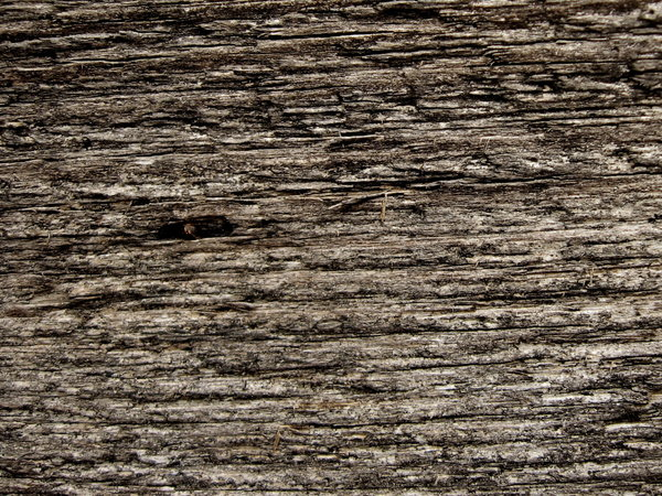 Texture: Old wooden texture, close-up