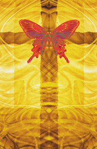Rebirth 1: Lo Res variations on a cross and butterfly.For a HI RES image, please visit:http://www.stockxpert.com ..