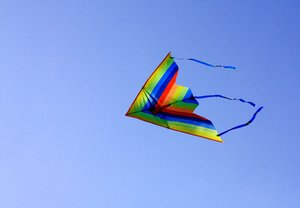 Kite Flying 3: Snapshots of kite flying on a sunny day