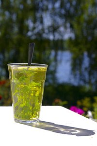 Mint tea 2: Mint tea fresh from the garden
