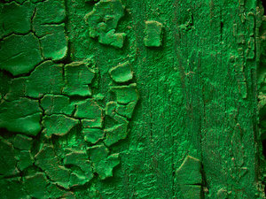Texture 15: Textures from around.