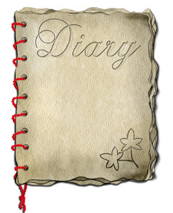 old diary 2