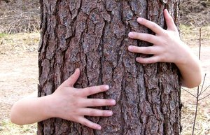 Hug a Tree!: My daughter celebrating spring :)  I'm going to try again with different lighting and background ... coming soon :)