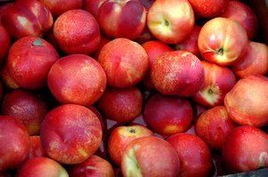 Fruit: no description