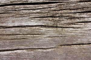 old wood ...