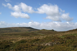Devon moorland: Moorland in Devon, England, in summer.