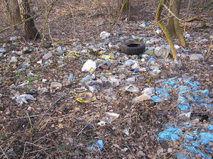 Wild litterplace: An illegal dump place.