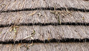 thatched roof: thatched hut roof - layers of thatching