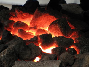 coal: no description