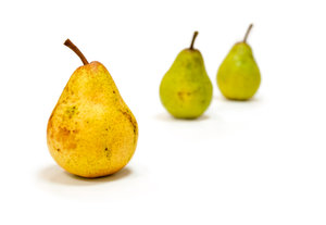 Fresh domestic pears: Three fresh domestic pears