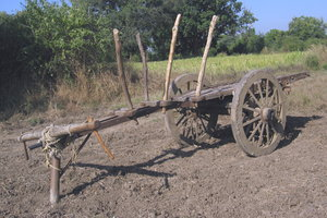 Cart 2: A cart awaiting harness to a pair of oxen at Village Sevasi in Gujarat, India.