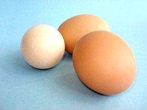 Chicken Eggs 4: Chicken Eggs