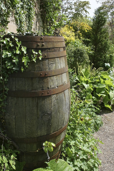 Water butt: An old water butt as a feature in a garden in Somerset, England.