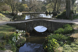Footbridge: A footbridge in a water garden in West Sussex, England.