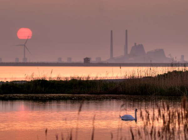 Powerplant in sunset - HDR: The combination of a powerplant, a windmill, a swan and a burning red sunset. The picture is HDR using 3 images.