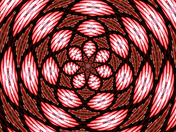 red and pink bauble rose: backgrounds, textures, patterns, kaleidoscopic patterns,  circles, shapes and  perspectives from altering and manipulating images