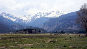 Rocky Mountain National Park: Some shots of Rocky Mountain National Park from the Morraine Park region.