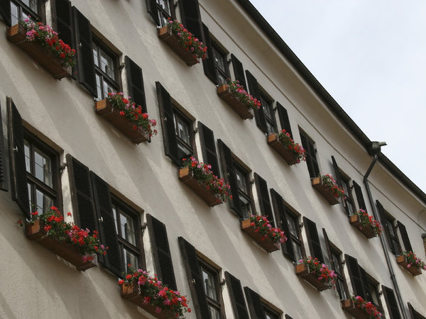 Windowboxes: Windowboxes in a town in Austria.