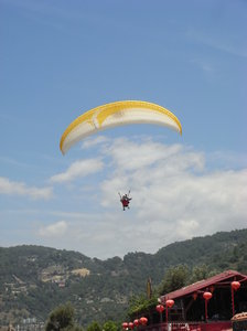 Paragliding: Watching the paragliders coming in to land