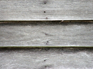 weathered grey boards