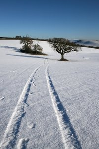 Tracks: Tractor tracks in a snowy field in Devon, England.