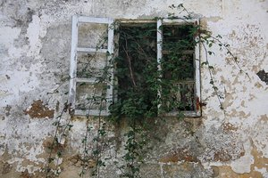 Old windows: Old windows