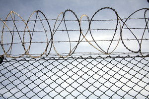 Security fence 5: Security fence