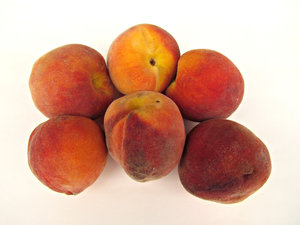 peaches: a variety of clingstone peaches