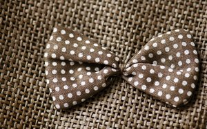 Dotted bow