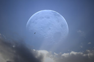 Giant Moon: A giant moon in the evening sky, behind the clouds. Bird flying past.
