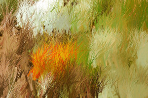 Rough Pastels 1: Playing around with rough pastel colours.Please support my workby visiting the sites wheremy images can be purchased.Please search for 'Billy Alexander'in single quotes atwww.thinkstockphotos.comI also have some stuff atwww.dreamstime.com/Billyruth03_port