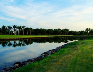Golfing and Lunch: Golfing and Lunch in Florida