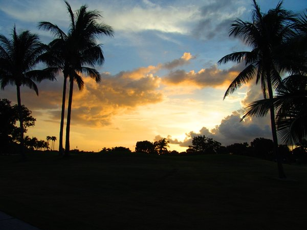 Sunset in Florida : Sunset on a Florida Golf Course with storm coming from the West.