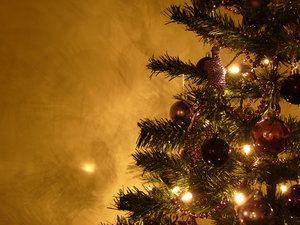 Graham's Christmas Tree 10: Everyone has been so nice about my Christmas Tree collection from last year I thought I'd create some more :) Last year's theme was silver and red - this year it's purple. Enjoy and, as always, I'd love to hear where you're using the photos!