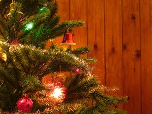 Christmas Tree: My parents' Christmas tree, set against a wood panelled wall.