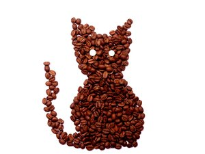 Coffee Cat: Coffee beans sharped liked a cat with white eyes