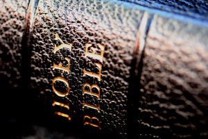 Bible - black spine