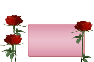 roses illustration: Three roses with template