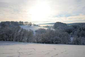 winter landscape: winter landscape