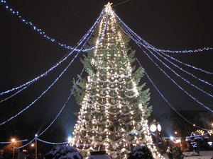Christmas tree: Big outdoors Christmas tree - Bucharest, Romania
