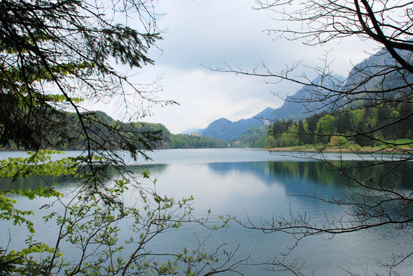 alpsee lake: alpsee lake