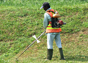 grass cutter at work