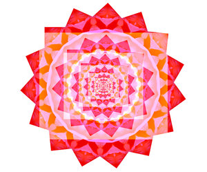 rose red circular square manda