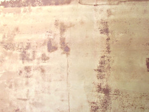 wall stains: stained wall being prepared for repainting