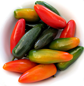 cool chilli colors