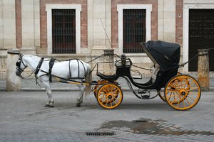 Horse and carriage: A horse and carriage in Seville, Spain.